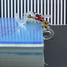 Bilkent Miniature Robotics Laboratory's soft and miniature robot SQuad featured in the news!